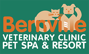 Bernville Veterinary Pet Spa & Resort